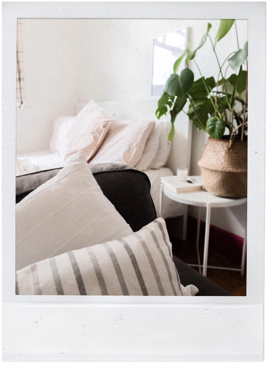 bedroom snap cushions a plant on a bedside table